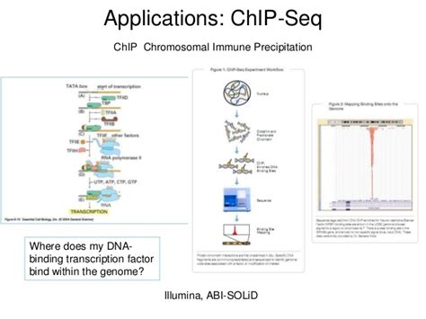 illumina technology next sequencing ngs technology overview