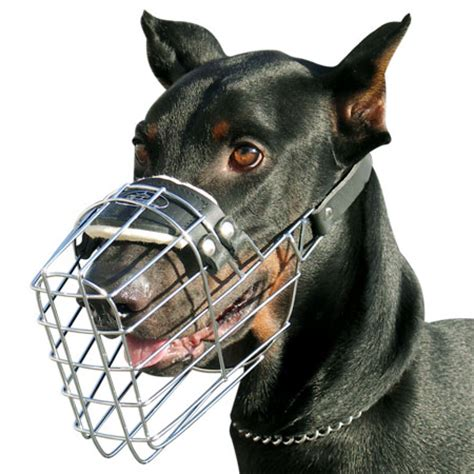 rottweiler cage size bull terrier fit comfort cage muzzle m9 m9 1073 wire muzzle 31