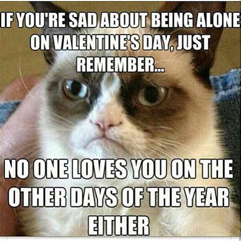 No Valentine Meme - grumpy cat