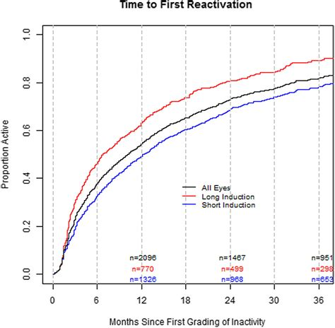 induction phase length treatment patterns and visual outcomes during the maintenance phase of treat and extend therapy