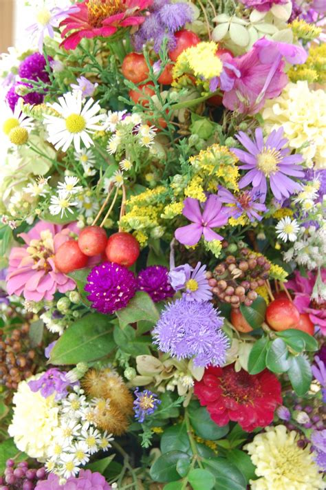 how to keep your annuals blooming all summer