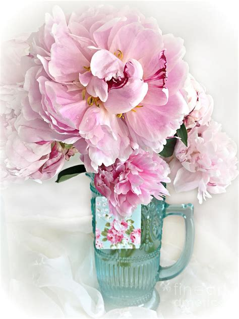 peonies in vase shabby chic cottage pink peonies peony flower print