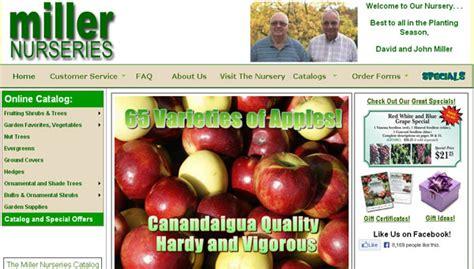Best Online Fruit Tree Nursery - top 10 sites to buy fruit trees online home gardening tips