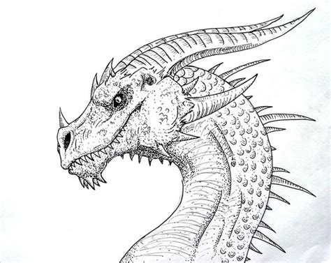 pen dragon tattoo dragon pen and ink by pearldragon145 on deviantart