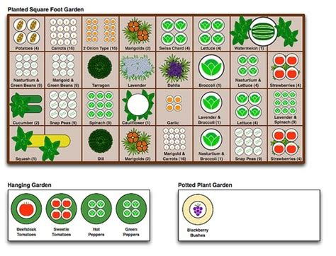 garden chart square foot gardening planting chart