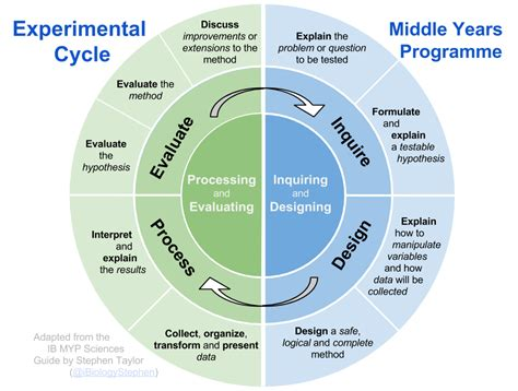 design lab criteria ib biology experimental cycle and other diagrams i biology