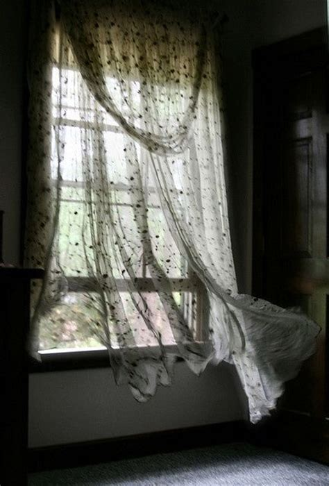blowing curtains 1121 best windows inside view images on pinterest