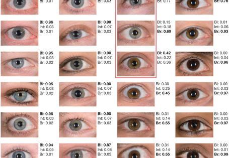 what does my eye color what does your eye color say about you eye colors and
