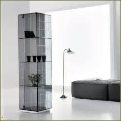 Glass Curio Cabinets Ikea Glass Corner Curio Display Cabinet Home Design Ideas