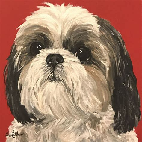 shih tzu pictures to print best 25 shih tzu ideas on shih tzu puppy shih tzu and pictures