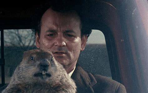 groundhog day live groundhog day isn t airing on tv this year where