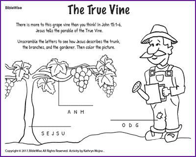 coloring pages jesus is the vine the true vine jesus parables kids korner biblewise