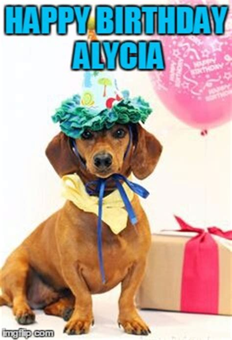 Dachshund Birthday Meme - dachshund birthday imgflip