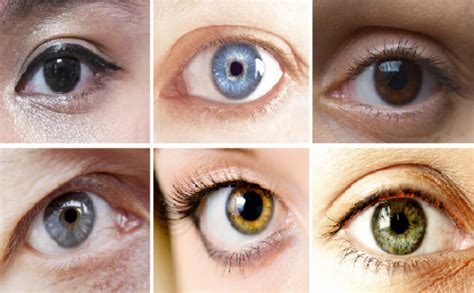 what does my eye color what does your eye color proprofs quiz