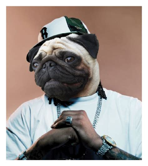 pug thug pin yolo swag on