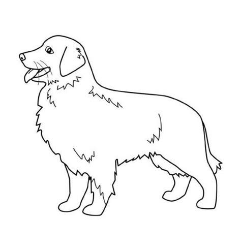 imagenes de animales para dibujar a lapiz perros para dibujar