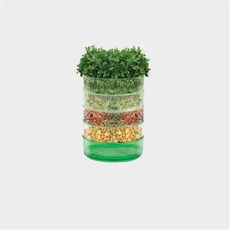 the kitchen seed sprouter sprout your own seeds to