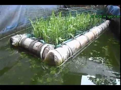 Sekam Bakar Untuk Akuaponik hidroponik rakit apung nh farm by helsya fitriansyah