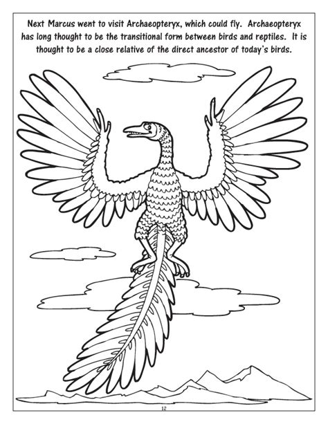 a field day coloring pages