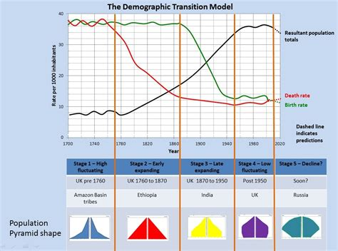 How To Make A Population Pyramid On Paper - populations in transition geography