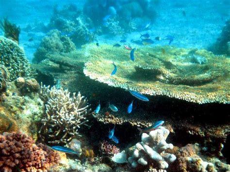 film barat waterworld pesona pulau moyo sumbawa wisata indonesia