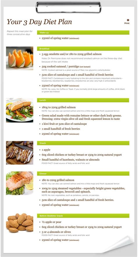 Detox Menu Ideas by Best 25 3 Day Diet Plan Ideas On
