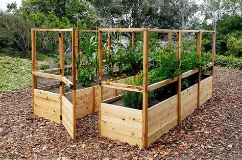 vegetable beds garden deer fence raised garden bed outdoor living today