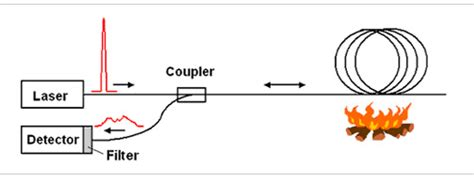 Distributed Temperature Sensor