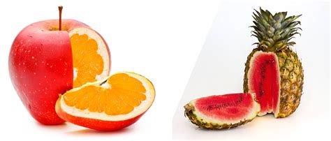 definicion de alimentos transgenicos 10 ejemplos de alimentos transg 233 nicos m 225 s comunes
