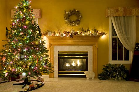 big christmas tree in small room tree fact guide american tree association