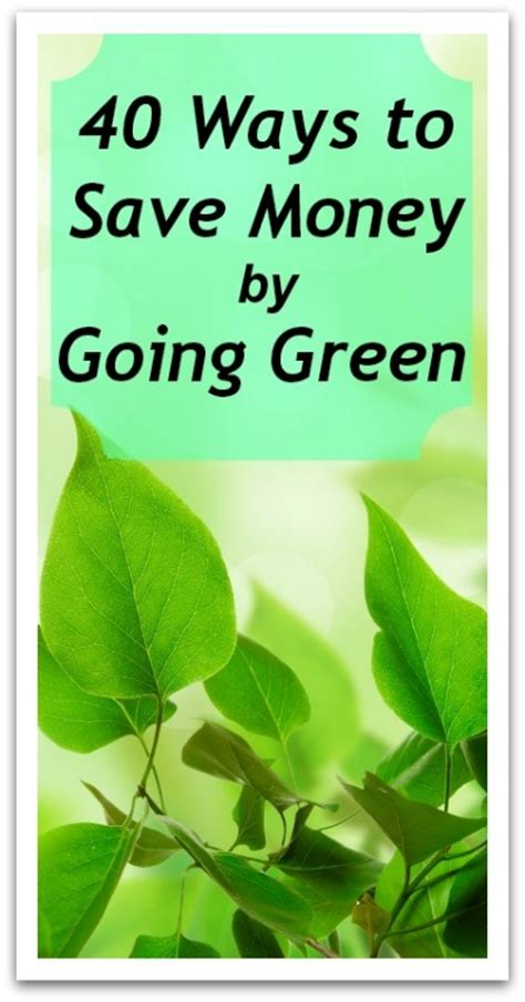 40 ways to save money by going green holistic
