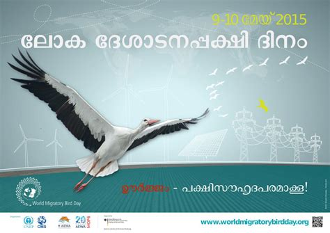 download materials world migratory bird day
