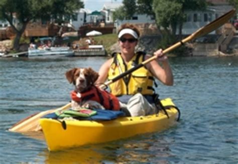 canoeing with dogs topkayaker net kayaking with your