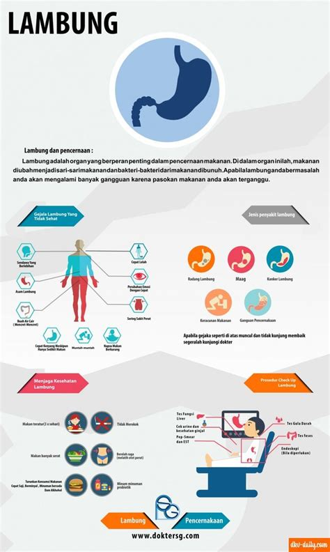 canva indonesia infographic quot lambung quot infographic pinterest