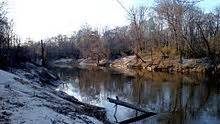 Which Feature Is Characteristic Of A Bottomland Hardwood Forest - pearl river mississippi louisiana