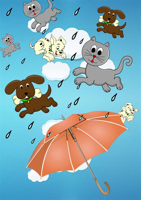 it s raining cats and dogs selcouth me febrero 2014