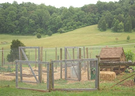 how to build a run how to build a chicken run the prairie homestead