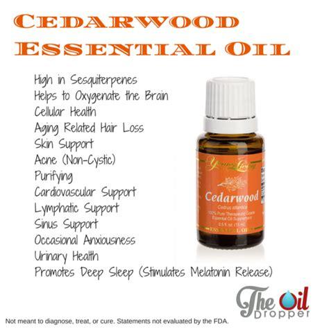 Aromaease Essential 15 Ml living cedarwood essential 15ml improve focus