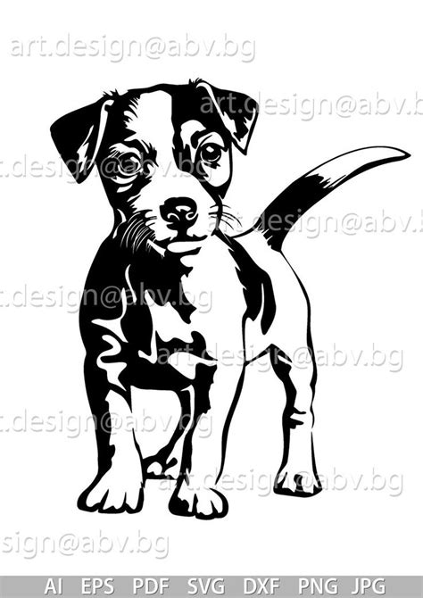 vector jack russell terrier dog svg ai png  eps