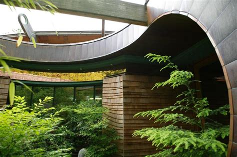 organic house contemporary architecture among the trees