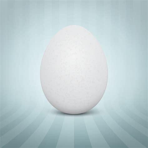 egg vectors   psd files