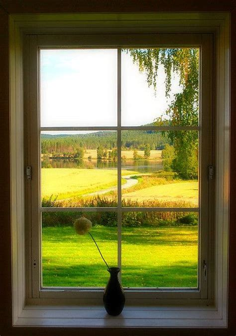 window with a view 17 best images about let s take a peek outside on window seats rosa and
