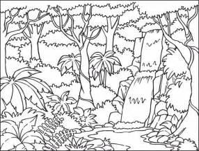 coloring pages rainforest coloring