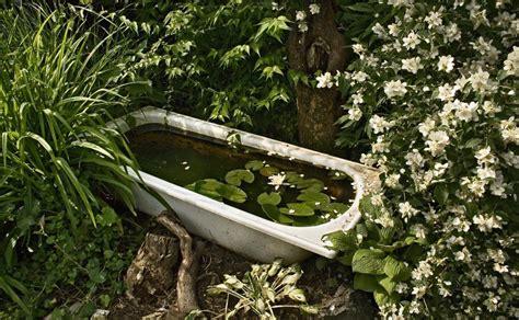 badewanne im garten badewanne in nachbars garten foto bild landschaft
