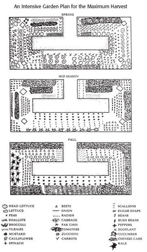 Pin By Tabatha Durand On Homesteading Self Sufficiency Intensive Gardening Layout