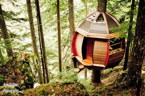 tree house to buy hidden egg treehouse by joel allen