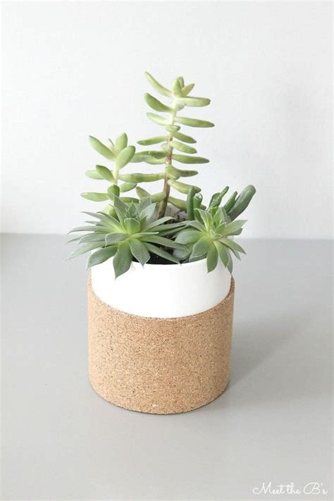 modern succulent planter 32 cork furniture and accessories ideas for every home digsdigs