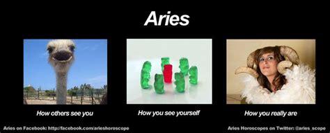 Aries Meme - funny aries meme zodiac memes pinterest