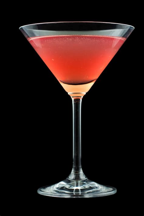 Martini Cocktail Recipe One Of The Best Vodka