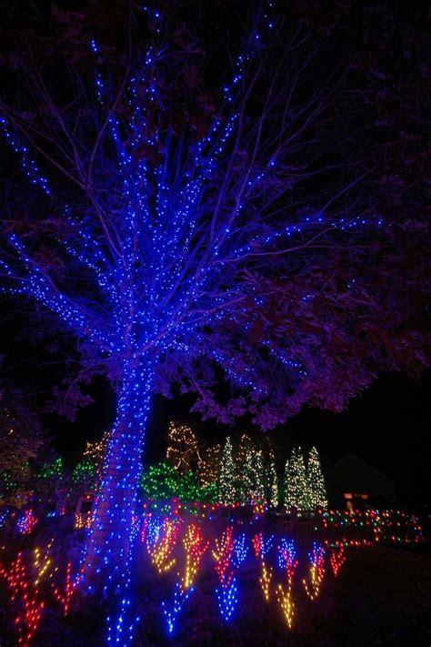 winter lights at north carolina arboretum in asheville